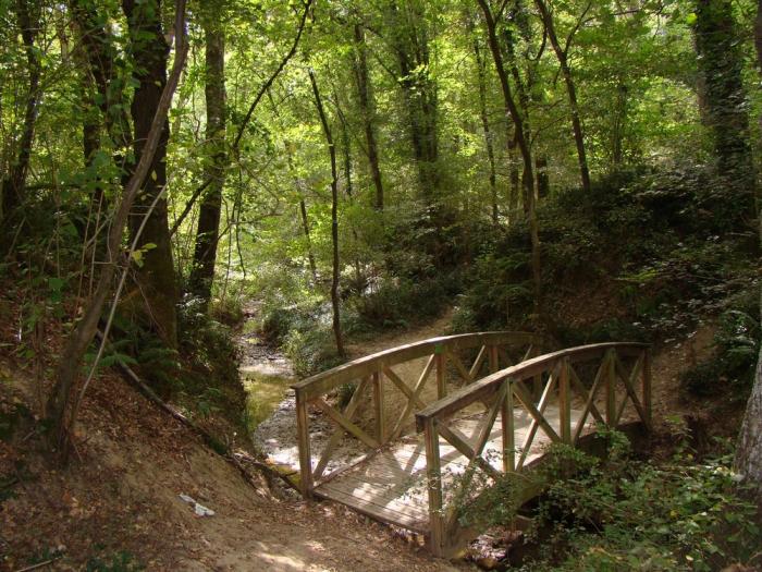 дървени мостове по поръчка 447-3253