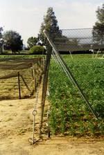 Защитна мрежа за защита на разсади от птици