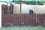 фирма за изработка на дървени огради за механи и кръчми