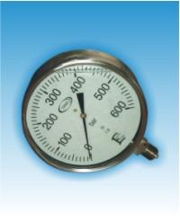 Виброустойчиви манометри ф160